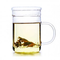 Glass Cup with Strainer-Silent Time