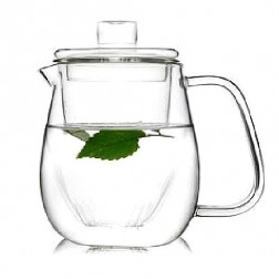 Glass Tea Pot with Strainer-Emperor Penguin